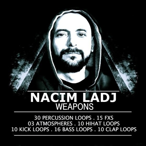 Big Bad Dog — Nacim Ladj Weapons (WAV)