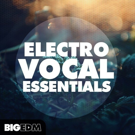 Big EDM — Electro Vocal Essentials (WAV, MIDI, FLP)