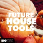 Big EDM — Future House Tools (WAV)