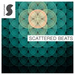 Samplephonics — Scattered Beats (WAV, Kontakt)