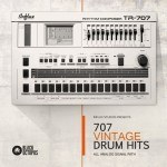 Black Octopus Sound — Influx Studios TR-707 Vintage Drum Hits (WAV)