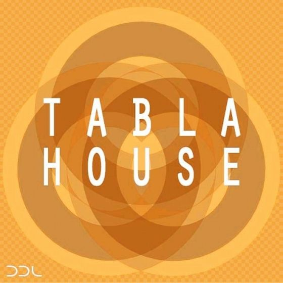 Deep Data Loops — Tabla House (WAV)