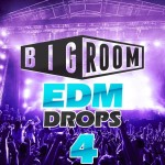 Mainroom Warehouse — Bigroom EDM Drops 4 (WAV/MIDI)