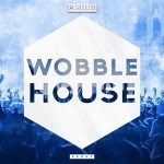 Platinum Sounds – Wobble House