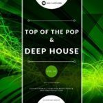 Nano Musik Loops – Top Of The Pop And Deep House Vol 2