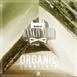 Rankin Audio – Organic Downtempo