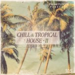Chill and Tropical House Vol 2 — современные сэмплы для Tropical House